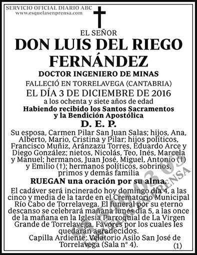 Luis del Riego Fernández
